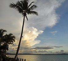 Beautiful Fiji by Margaret Stevens