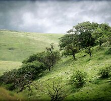 The Green, Green Hills of Home by Ellen Cotton