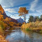 Overlooking The Watchman by Marty Straub