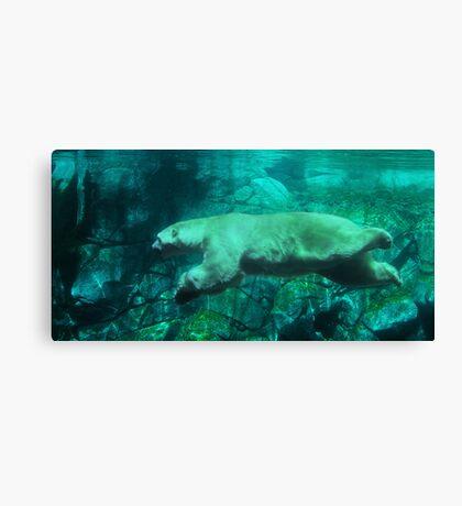 Polar Aquatic Canvas Print