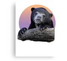 Confession Bear  Canvas Print