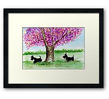 Two Scottie Dogs Framed Print