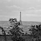 Eiffel Tower from Montmatre by David Perrin