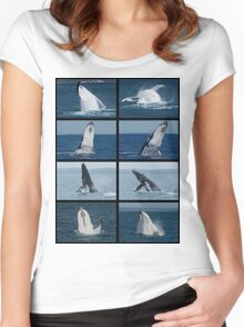 Humpback Whales Breaching 2 Women's Fitted Scoop T-Shirt