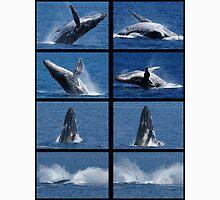 Humpback Whales Breaching Unisex T-Shirt