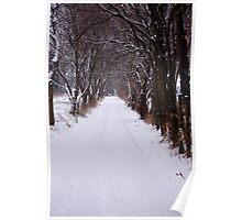 Snowy Drive on a Winter Morning Poster