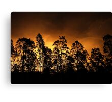Gold Afternoon Fix Canvas Print
