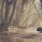 Misty by the River in the Forest. by Edward Denyer