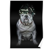 Private Bulldog 2 Poster