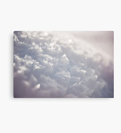 Brush Strokes of Nature Canvas Print