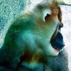 Primate 1 by Dawn Eshelman