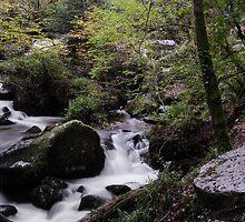 A River Runs Through  by scenestalker