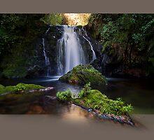 Whataroa No2 - Hidden Treasure by Ken Wright