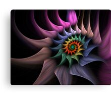 Spiral Trip Canvas Print