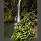 Kaiate Falls, Fern Gully by Ken Wright