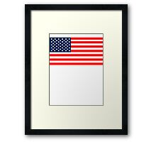 Flag of the United States of America Framed Print