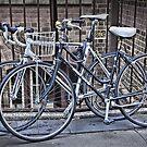 Bikes at the Rocks NSW Australia by Bev Woodman