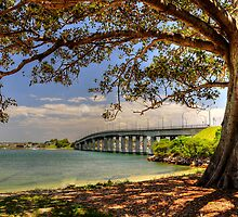 Captain Cook Bridge by Terry Everson