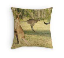 Kangaroo 3 Throw Pillow