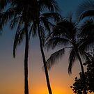Sunset at Waikiki Beach by Karen Duffy