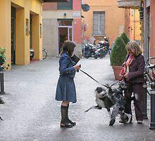 Friendly scrap, Bologna, Italy by Andrew Jones