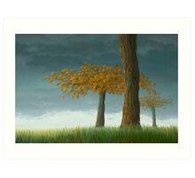Quercus corymbion Art Print