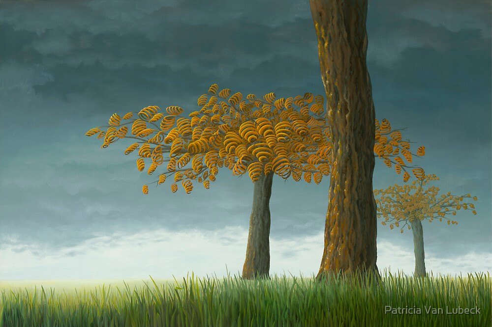 Quercus corymbion by Patricia Van Lubeck