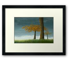 Quercus corymbion Framed Print
