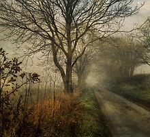 Holloway Road in Winter Fog by Sarah Jarrett