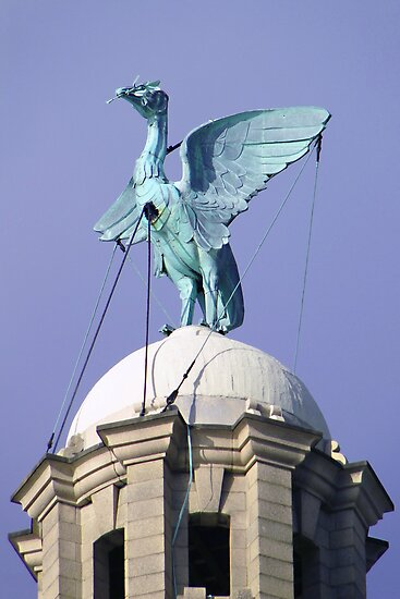 """Free As A Bird"" The Liver Bird by Barrie Woodward"
