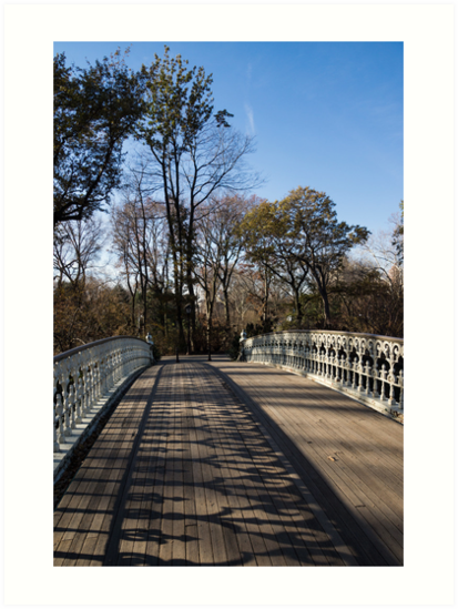Central Park Bridge Shadows by Georgia Mizuleva