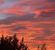 Brilliant Sky by Kathi Huff