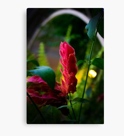Surreal Flower Canvas Print