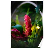 Surreal Flower Poster