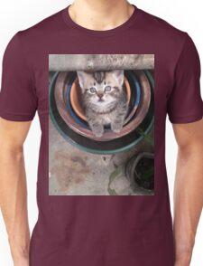 Kitten in a pot Unisex T-Shirt