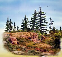 Outcrop by Wib Dawson