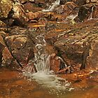 Mountain Stream by Michele Conner