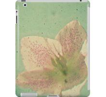 Nostalgia iPad Case/Skin
