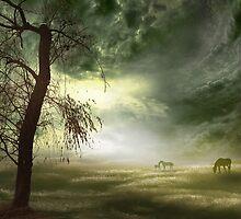 Equine Silhouettes by Igor Zenin