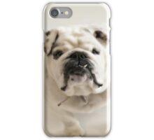 Bull Dog iPhone Case/Skin