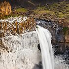 Palouse Falls Basalt and Ice by Dan Mihai