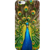 Peacock Pride iPhone Case/Skin