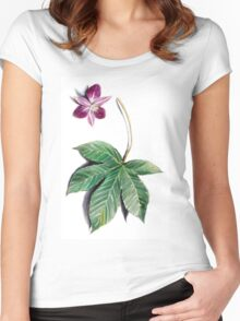 tropical herbarium Women's Fitted Scoop T-Shirt