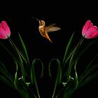 IN TULIP HEAVEN~ by RoseMarie747