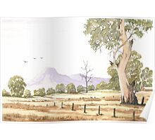 Australian landscape with three birds and a distant mountain Poster