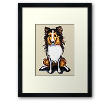 Sable Sheltie Sit Pretty Framed Print
