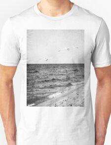 Lake Michigan Seagulls T-Shirt