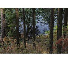 Lake Coeur D'Alene  Photographic Print