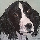 Torch - English Springer Spaniel Commission by Anita Meistrell Putman