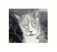 Cat Head Grey Art Print
